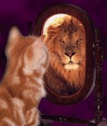 Lion_in_the_mirror