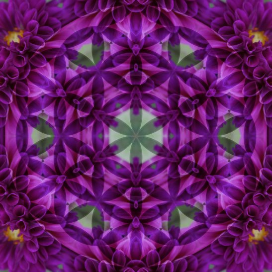 Flower_of_Life_Mandala